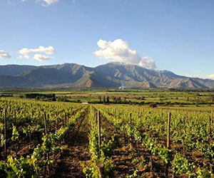 beautiful wineries in Chile