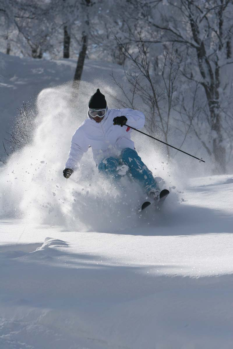 nozawa onsen alpine adventures luxury ski vacationsalpine