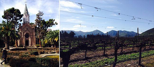 Maipo-Valley-Chile-wine